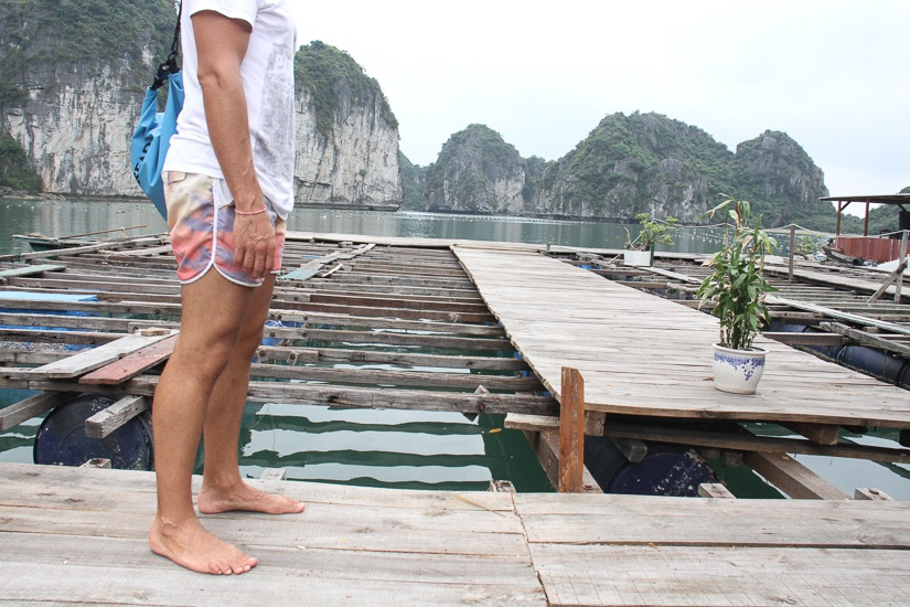 what to see in Halong Bay