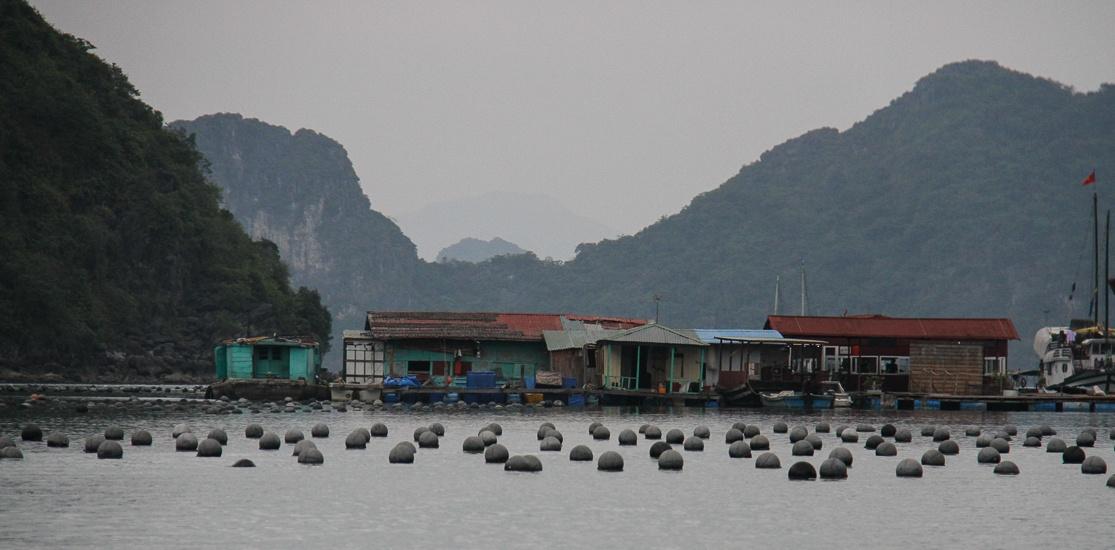 Tung Sau Pearl Farm Village, Halong Bay