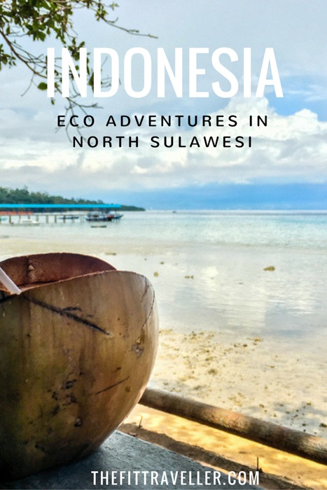 Eco Adventure in North Sulawesi, Indonesia | Bunaken National Park. North Sulawesi Indonesia is an adventure destination and eco haven. We went snorkelling in Bunaken National Park & met wildlife in Tangkoko Nature Reserve. ********** Bunaken National Park | Sulawesi Indonesia | Sulawesi | Things to do in Sulawesi | Eco Tourism Indonesia | What to do in Sulawesi | What to pack for a trip to Sulawesi | What to see in Sulawesi | Tangkoko Nature Reserve |