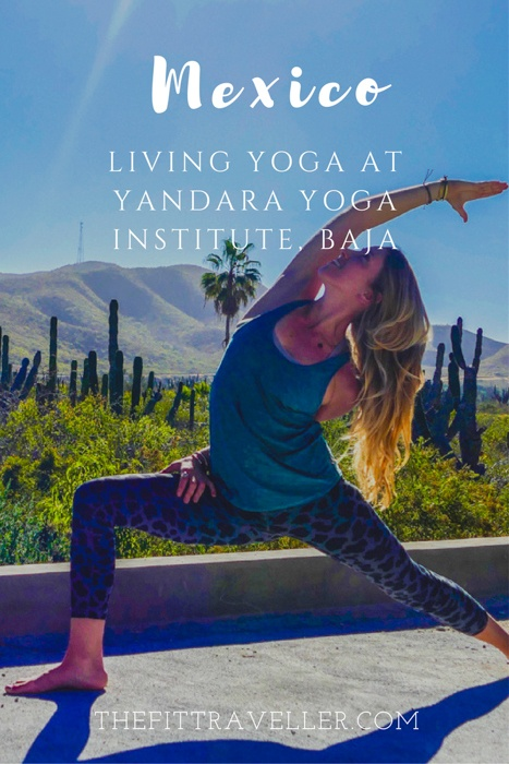 Yandara Yoga Institute | First-hand experience with yoga teacher training in Baja, Mexico | Yoga in Baja | Living Yoga | Yoga Teacher training Mexico | Yoga Retreats Mexico | Yoga Travel | #wellnesstravel #yandarayogainstitute #yandara #yogatravel