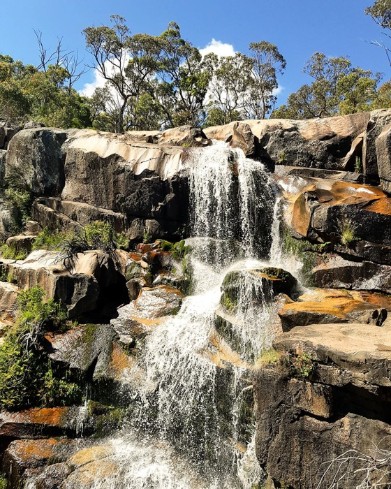 Healthy Travel Guide to Canberra. Image © Amelia Bidgood