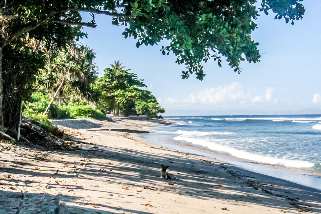 what to do in lombok