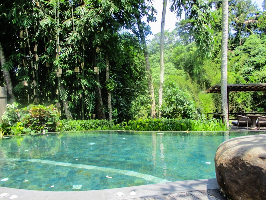 Top yoga and wellness retreats in Ubud, Bali