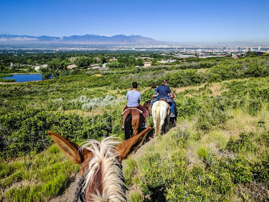 Horse riding near Salt Lake City