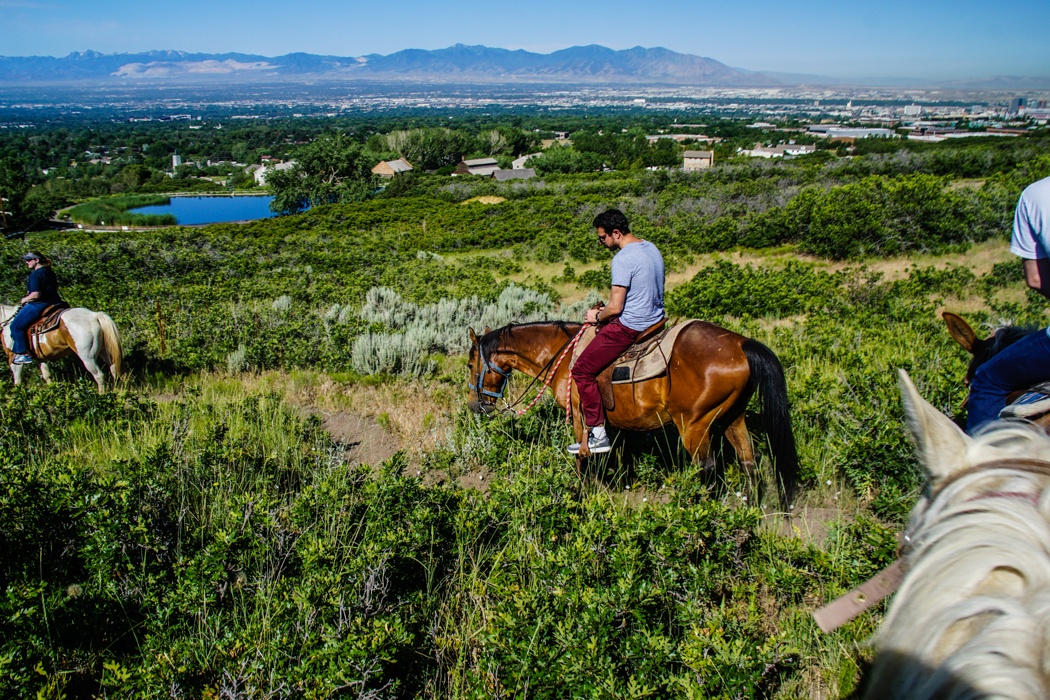 horse riding in Utah
