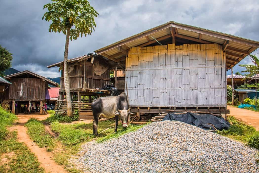 Ban Mae Klang Luang village Thailand
