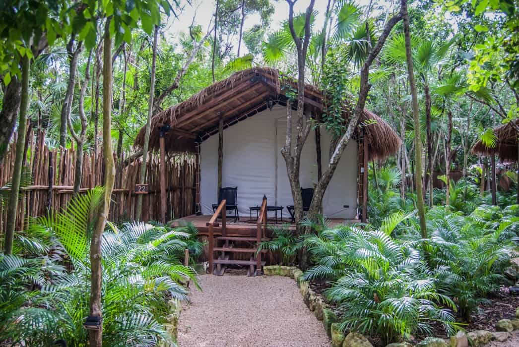 Jungle Room at Habitas Tulum