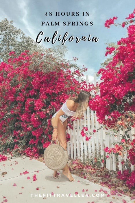 This Palm Springs guide has everything you need to plan the perfect 48 hours in Palm Springs. We include hotels in Palm Springs such as the Parker Palm Springs so you know where to stay, the best healthy restaurants in Palm Springs and what to do in Palm Springs, particularly outdoor activities. | 5 star hotels Palm Springs | Things to do Palm Springs | Palm Springs Travel Weekend Getaway | #palmsprings #california #traveltips #travelphotography