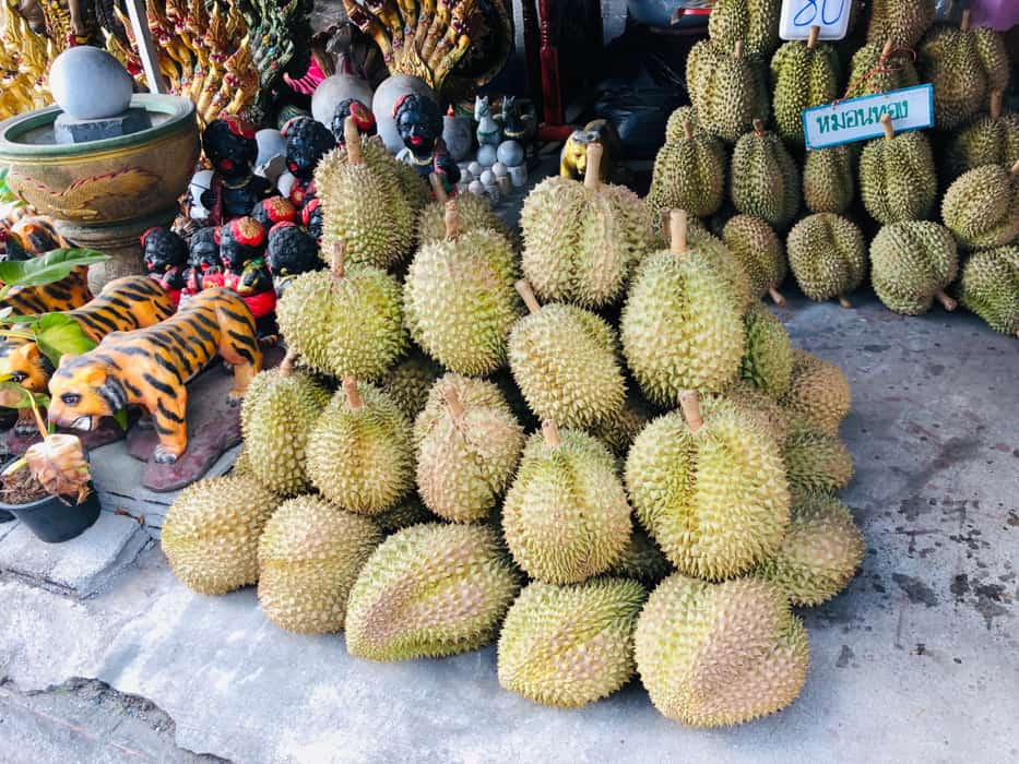 durian fruit thailand